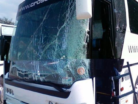 fozzy_tour bus